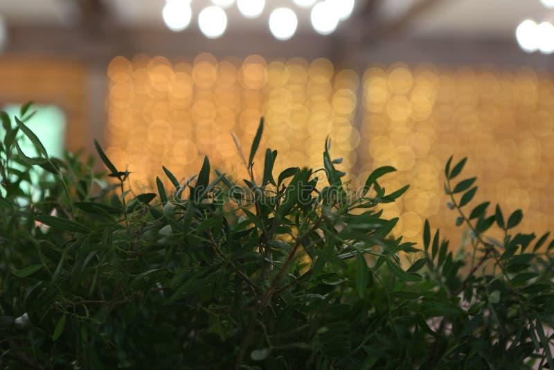 guld- blom- för festliga girlander för dekorbankettkorridor arkivbild