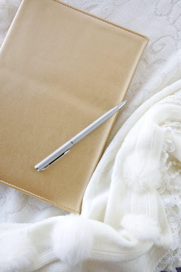 Guld- bok med silverpennan arkivbilder