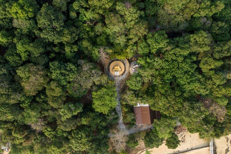 guld- Buddhastaty för flyg- sikt i den Phayam templet arkivfoto