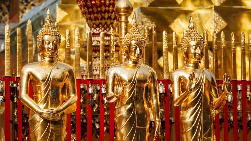 Guld- Buddhastatyer i Wat Phra That Doi Suthep royaltyfria bilder