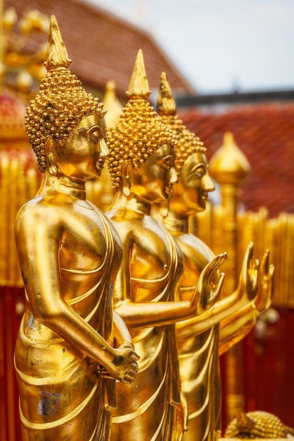 Guld- Buddhastatyer i Wat Phra That Doi Suthep royaltyfri bild