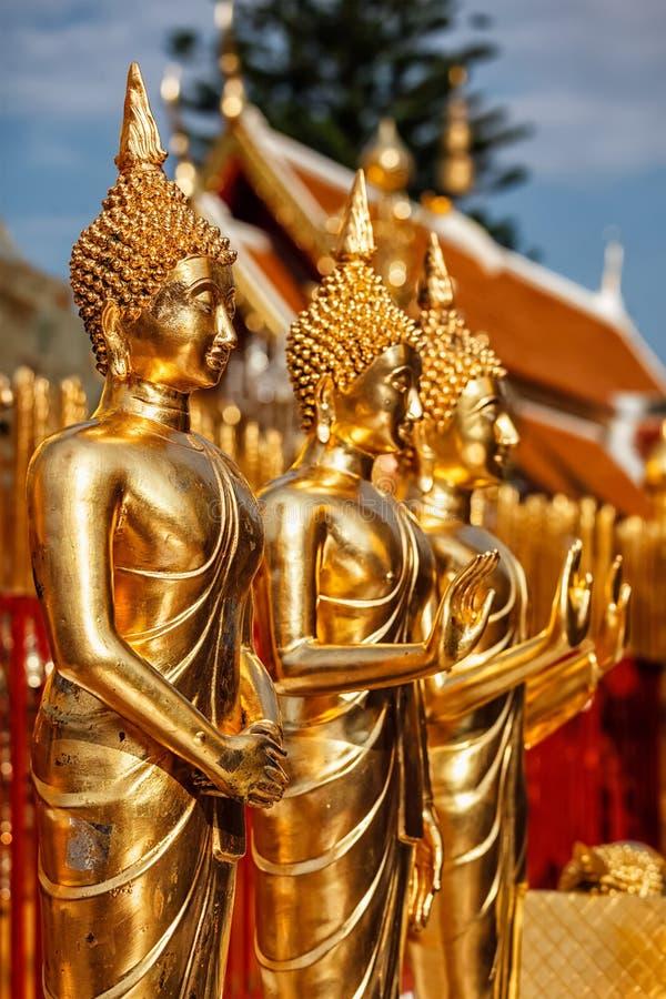 Guld- Buddhastatyer i Wat Phra That Doi Suthep royaltyfri foto