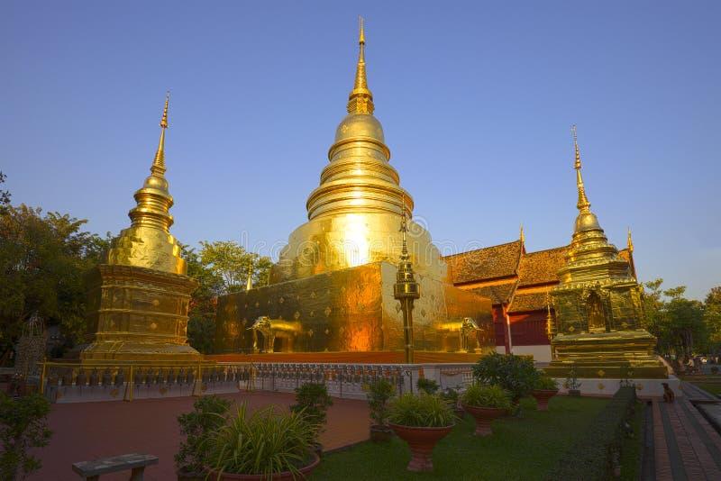 Guld- chedi av den buddistiska templet Wat Phra Singh, afton Chiag Mai, Thailand arkivbilder