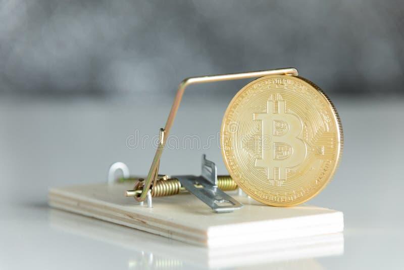 Guld- cryptocurrencymyntbitcoin i råttfälla på vit backgroun arkivbild