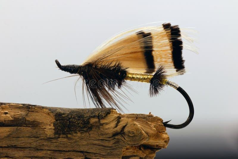 Guld- drag för klipskt fiske arkivbilder