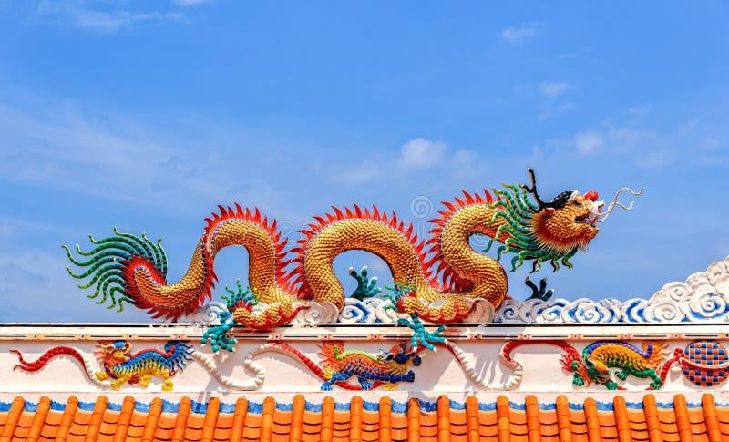 Guld- drake mot bakgrund för blå himmel, närbild arkivbild