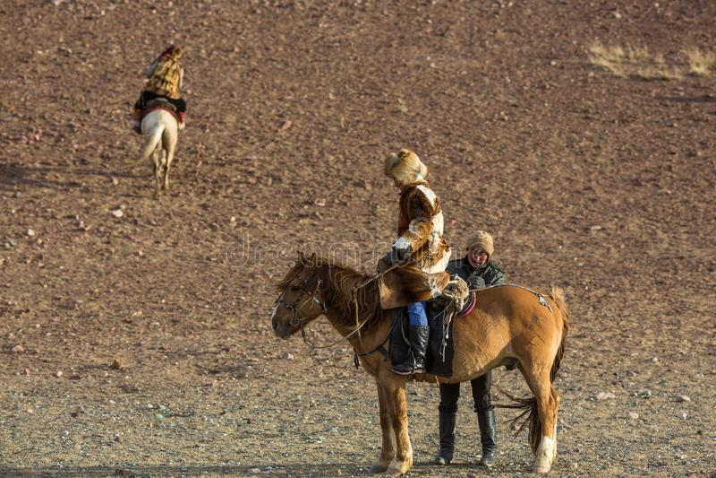 Guld- Eagle Hunter undervisar henne ung dotterjakt med fåglar av rovet till haren i ökenberg av västra Mongoliet arkivbild