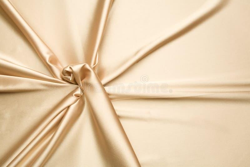 guld- enkel modellsatäng royaltyfri bild