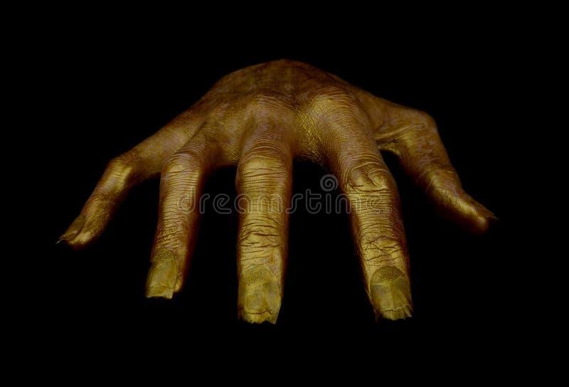 Guld- färg för ruskig hand royaltyfria foton