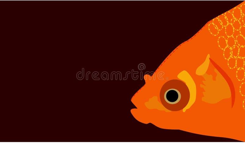 Guld- fiskframsida med tomt utrymme för meddelande eller vektor för objektrengöringslätt royaltyfri illustrationer