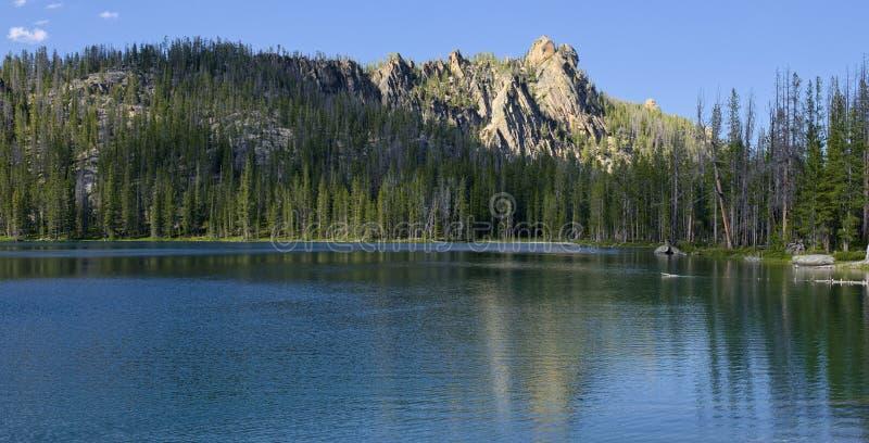 Guld- forell sjö royaltyfri bild