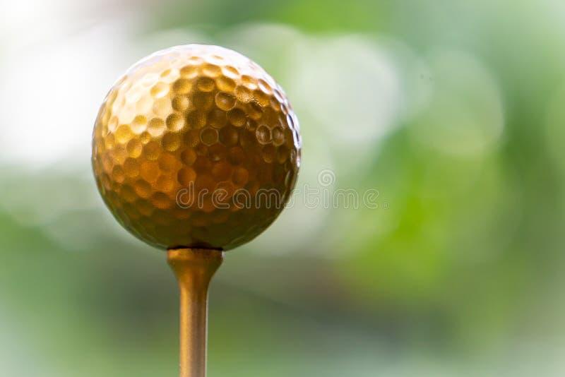 Guld- golfboll är världens största sport arkivbild