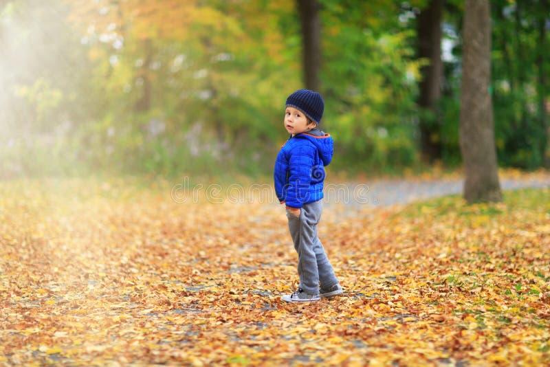 Guld- höstbakgrund med nedgångsidorna och det lilla lilla barnet arkivfoton