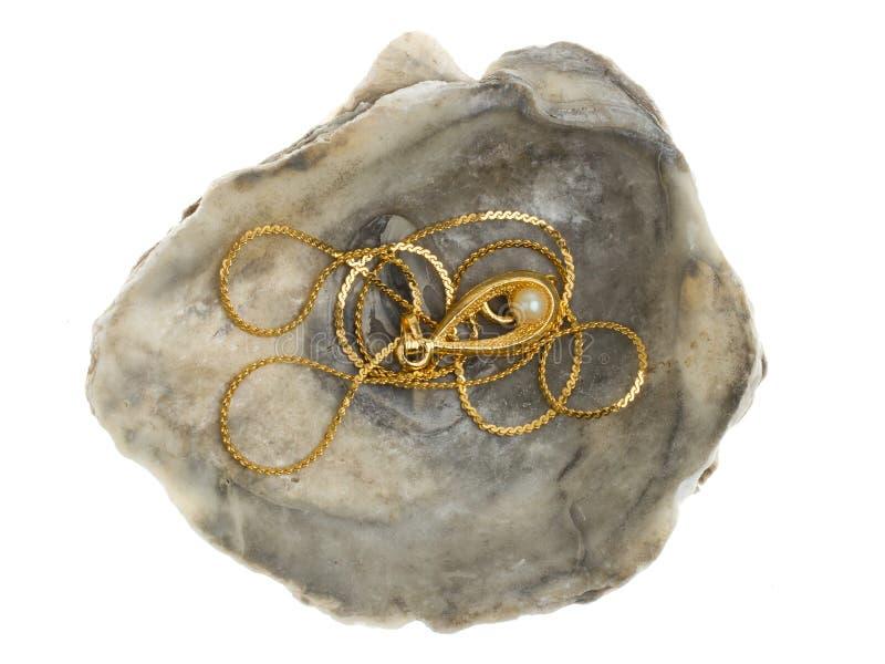 Guld- halsband med en pärla i en oystershell arkivfoton