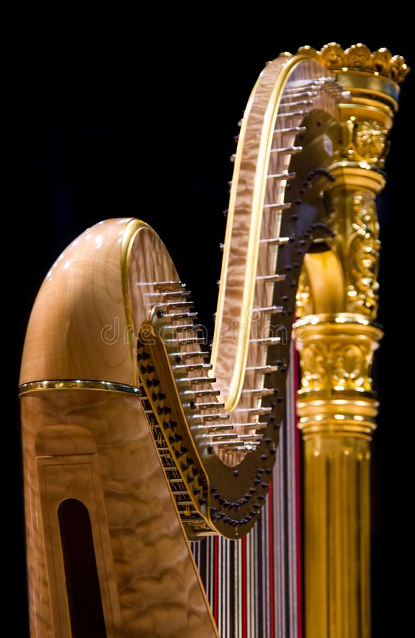 guld- harpa fotografering för bildbyråer