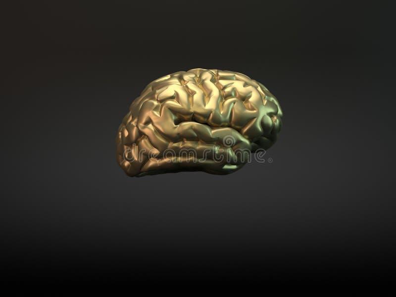 guld- hjärna stock illustrationer