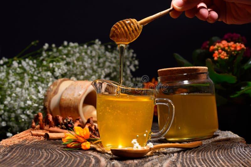 Guld- honung och färgrika blommor royaltyfri foto