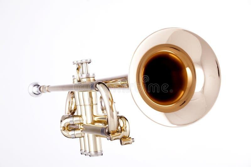 guld isolerad trumpetwhite royaltyfri bild