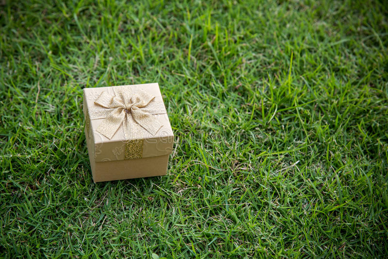 Guld- julgåvaask på grönt gräs arkivfoto