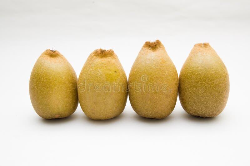 guld- kiwis royaltyfri bild