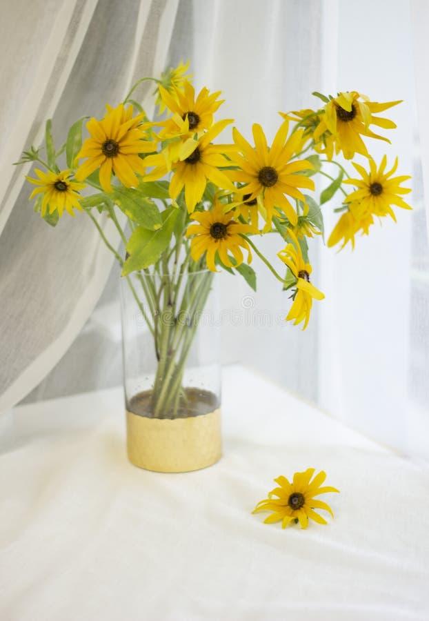 Guld- krysantemum i en guld- vas vid fönstret royaltyfria foton