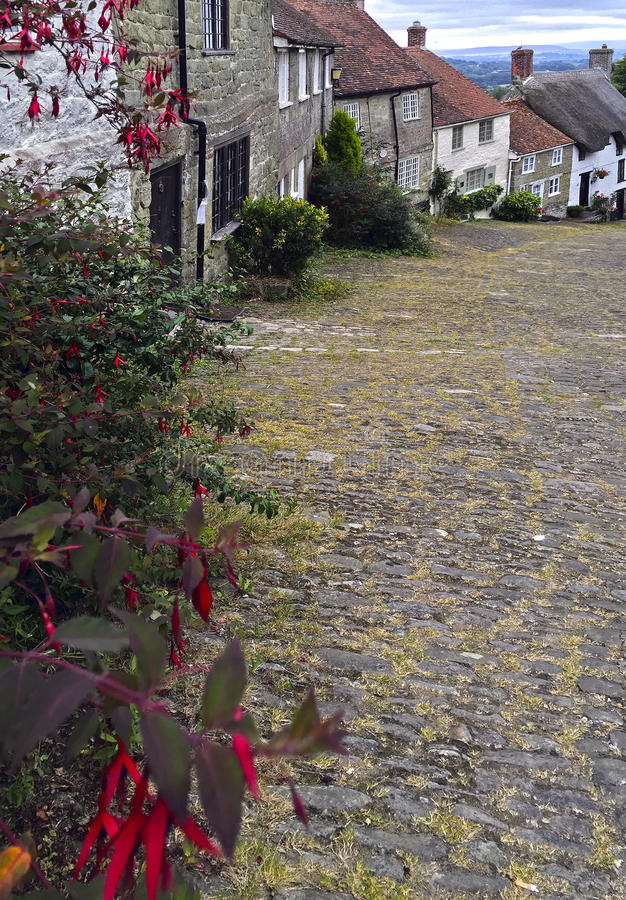 Guld- kulle Shaftesbury Dorset royaltyfri fotografi