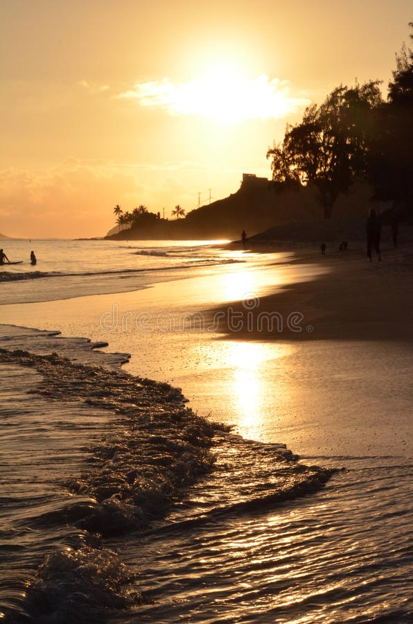 Guld- kust i Hawaii royaltyfri fotografi