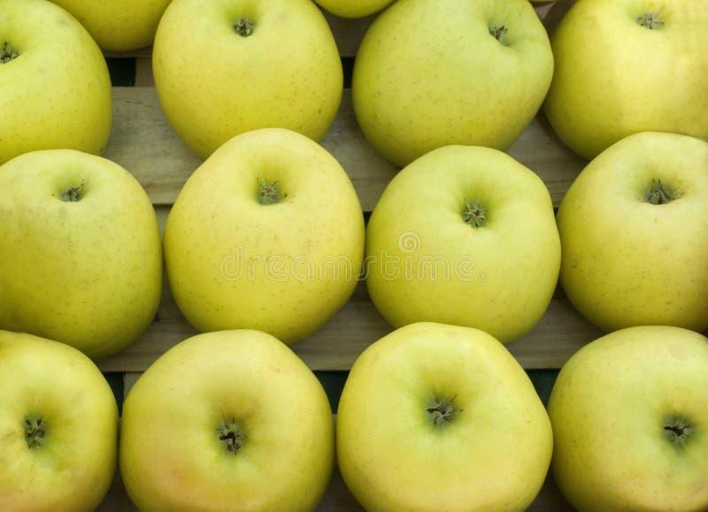 Guld- - läckra äpplen på ett stånd royaltyfri foto
