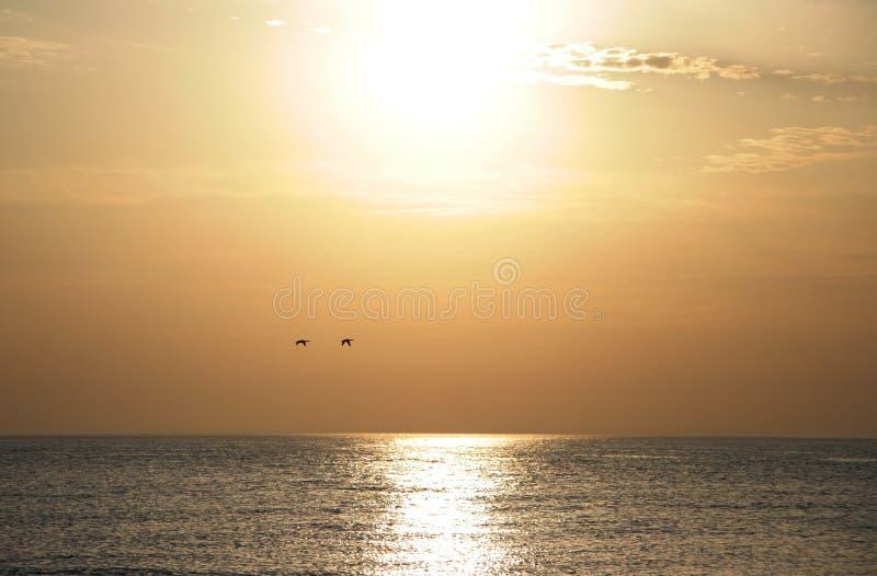 guld- lake över solnedgång arkivbild
