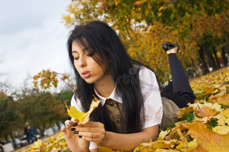 guld- leaves royaltyfri fotografi