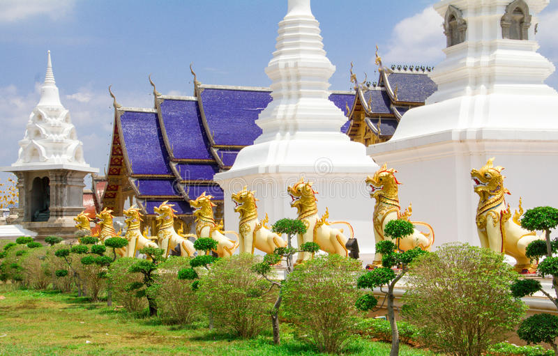 Guld- lejon som bevakar pagoden, Chiang Mai arkivfoton