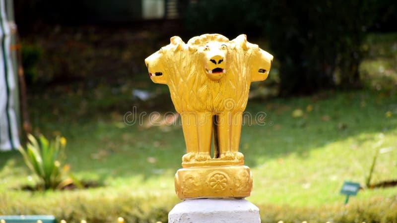 Guld- lionstaty fotografering för bildbyråer