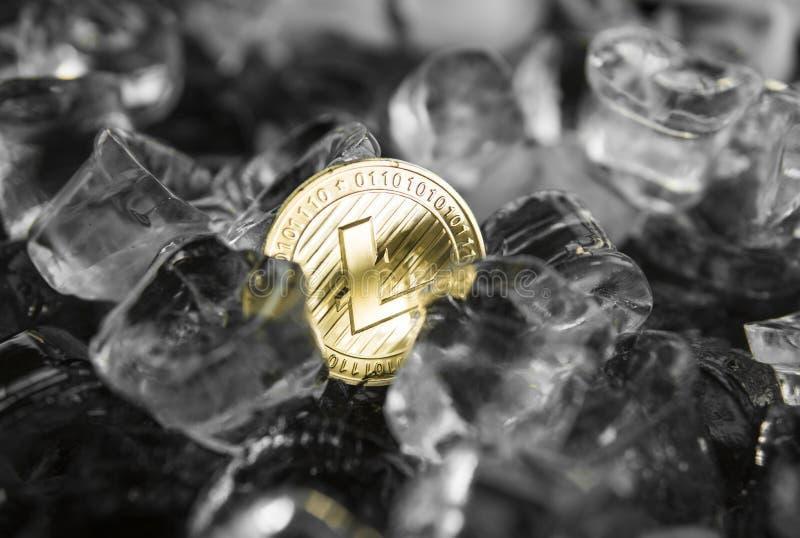Guld- litecoinmynt på isbakgrund Bryta litecoins Begreppet av utbytet i vinter frysning Blockchain bryta royaltyfria bilder