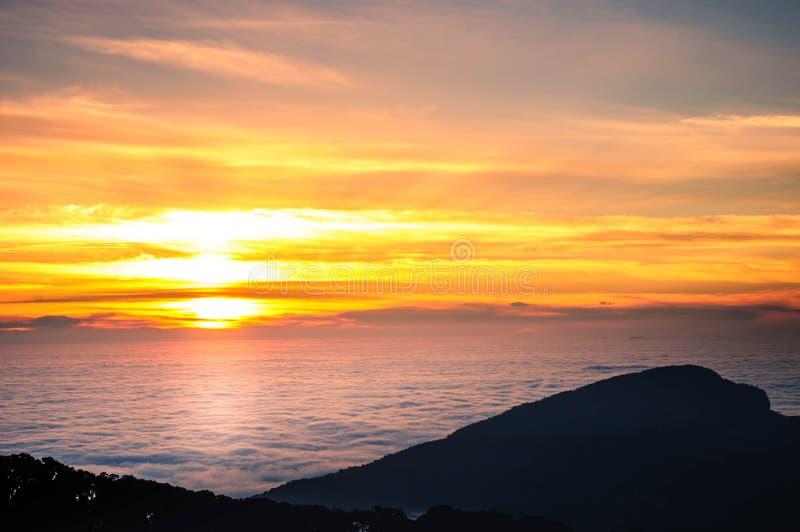 Guld- ljus av soluppgång över havet av mist arkivfoto