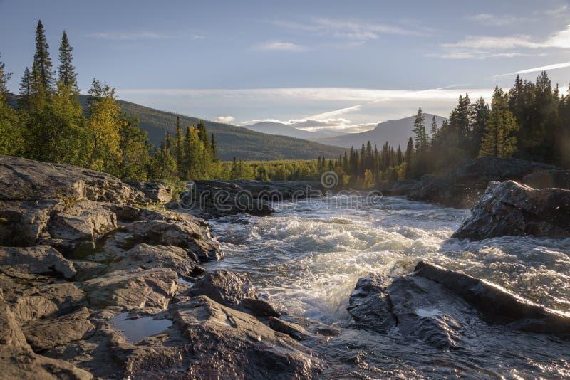 Guld- ljust skina på den lösa floden som flödar ner det härliga svensklandskapet royaltyfri fotografi