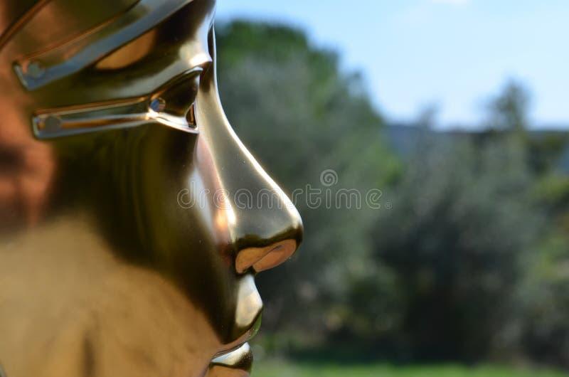 Guld- maskering royaltyfri fotografi
