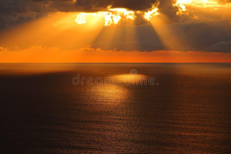 Guld- morgon på det lugna havet royaltyfri fotografi