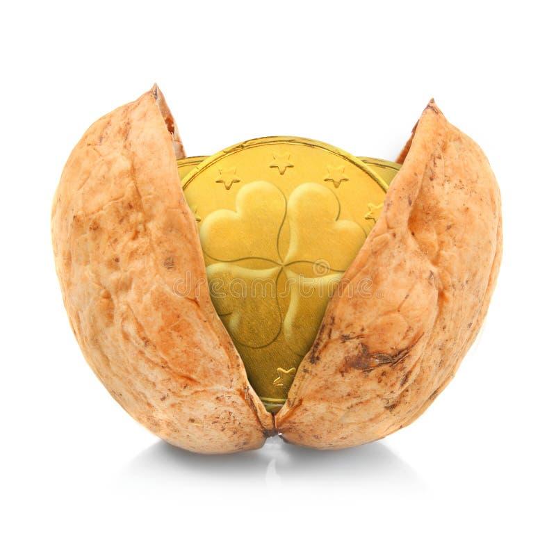 Guld- myntar i nutshellen. arkivfoton