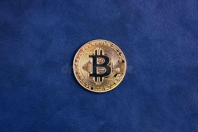 Guld- myntbitcoin royaltyfri fotografi