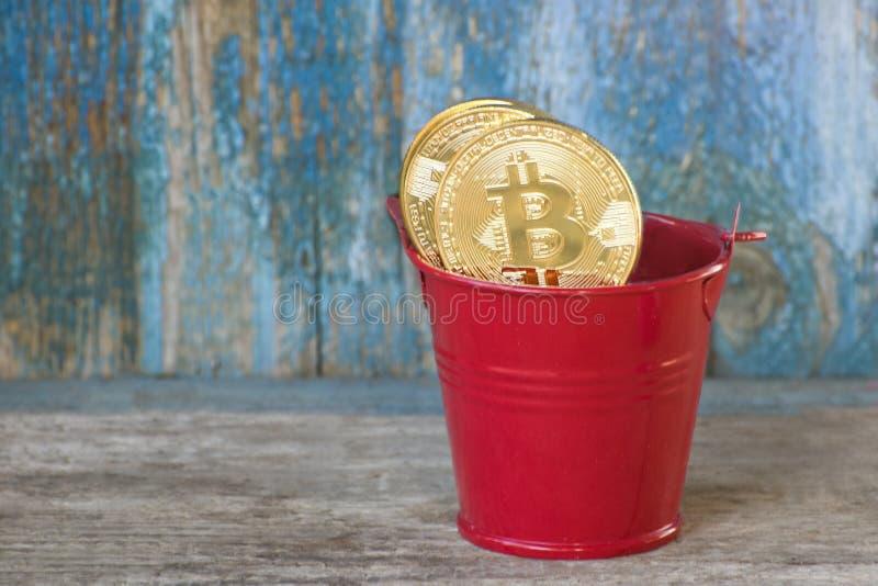 Guld- myntbitcoin i kruka gammalt trä för bakgrund Conc affär royaltyfria bilder