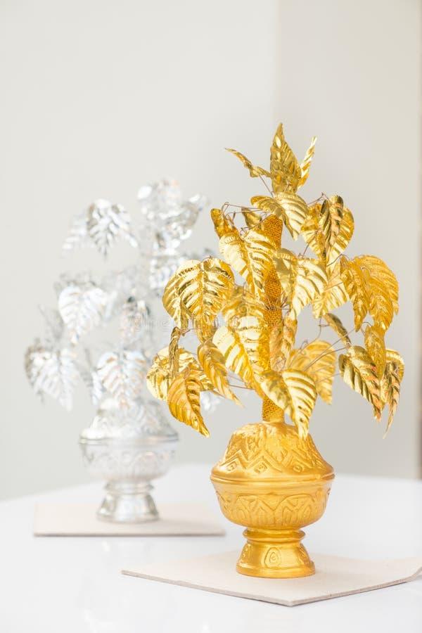 Guld- och silverBodhi träd (bo-trädet eller pipal) royaltyfria foton