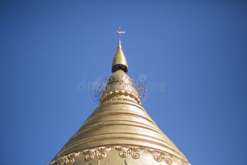 Guld- pagod i Myanmar royaltyfri fotografi