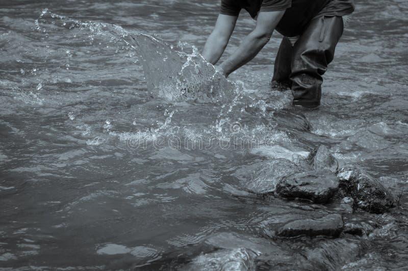 Guld- panner på floden som spelar med vattnet; svart och whi royaltyfri foto