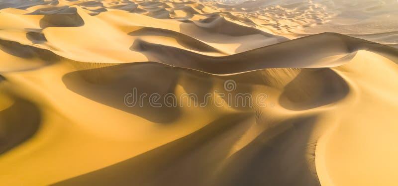 Guld- Sanddynpanorama royaltyfri fotografi