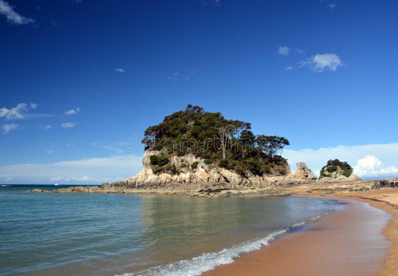 Guld- sander & strand på Kaiteriteri, Nya Zeeland. arkivfoto