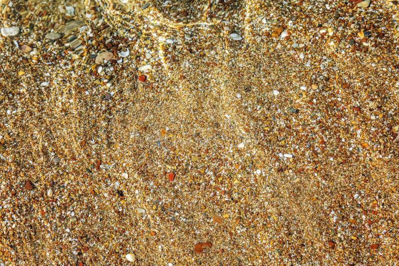 Guld- sandig botten av havet, bakgrund Utrymme f?r text fotografering för bildbyråer