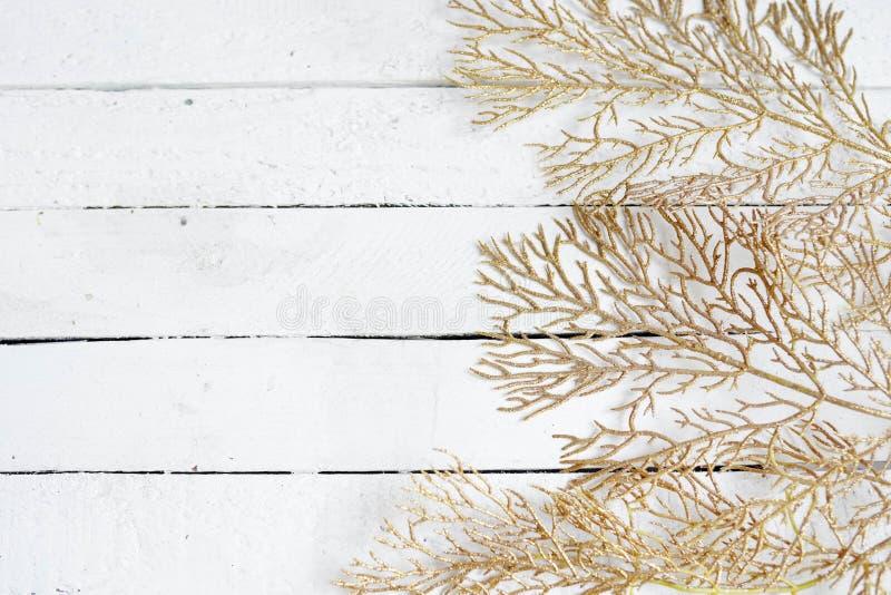 Guld- sidor på vit träbakgrund f?r eps-mapp f?r 8 kort greeting bland annat mall kopiera avst?nd royaltyfria bilder