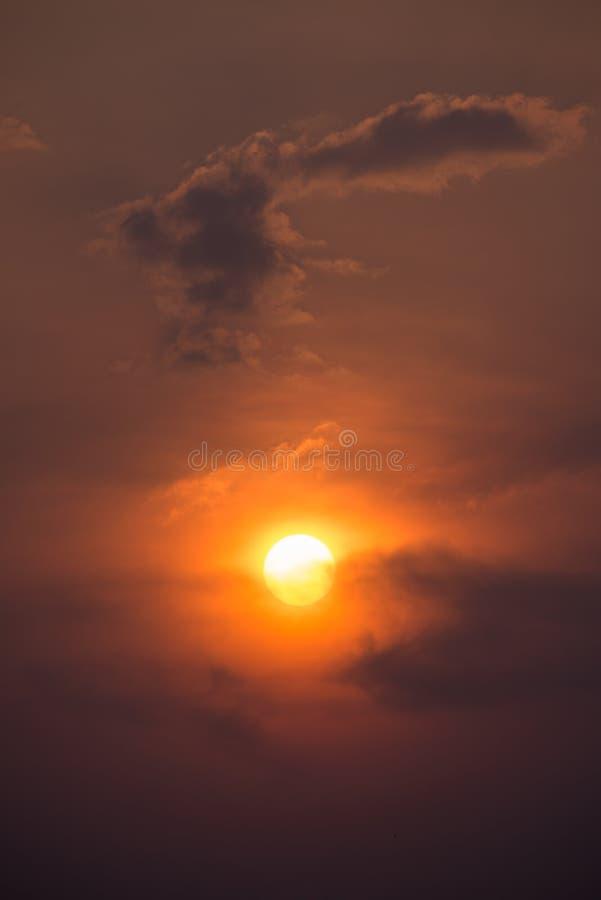 Guld- sollöneförhöjning fotografering för bildbyråer