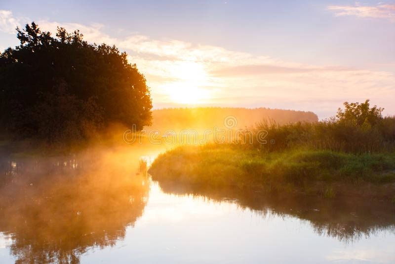 Guld- solljus över flodkurva i landsbygd SOMMAREN landskap royaltyfri bild