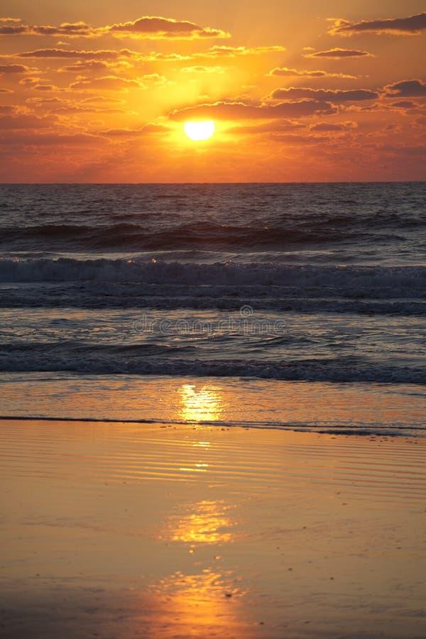 Guld- solnedgång över stranden royaltyfri bild